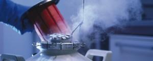 Cántara nitrógeno líquido